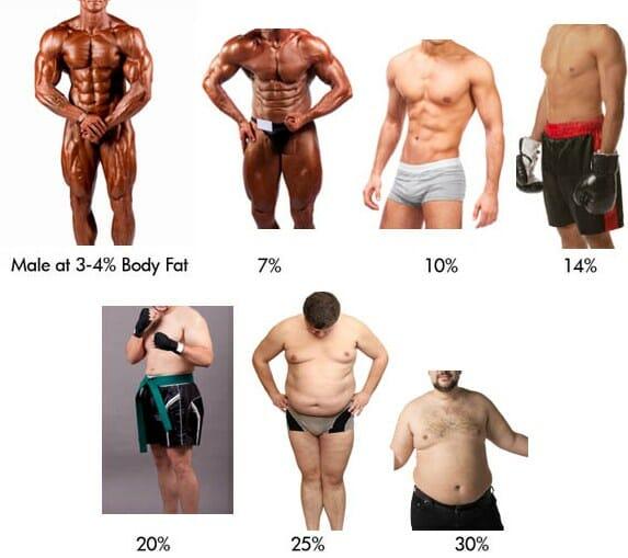 Comment déterminer son pourcentage de gras?