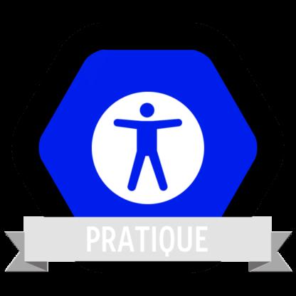 "Image du Badge ""Accessibility (1872)"" fourni par The Noun Project sous Creative Commons CC0 - No Rights Reserved"